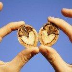 Грецкие орехи 8 основных преимуществ, которые сохраняют ваше здоровье