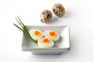 perepelinye-jajca
