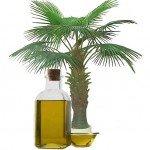 Вред пальмового масла. Миф или реальность?