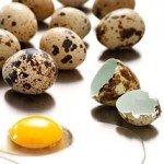 Могут ли яйца перепелки нанести вред организму?