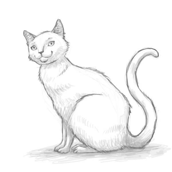 Учимся рисовать: сидящая кошка