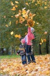Стихи про осенние листья