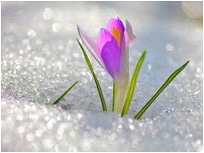 Учим стихи о весне